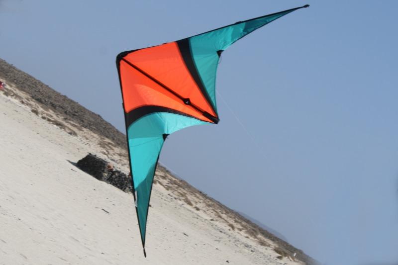 Foto van Spider Kites